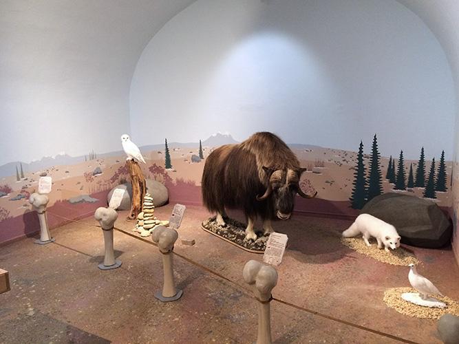 museumkoblenz_7